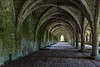 Fountains Abbey – the cellarium