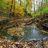 Creek and Fall Colors DWA_5137