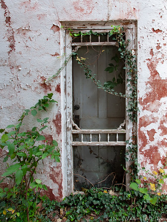 Doors from Days Gone By  DWA_5165