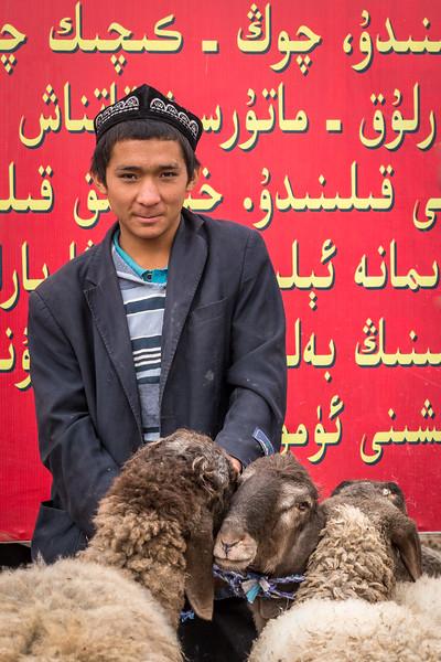 Kashgar, China. A young man awaits buyers for his sheep at the massive livestock market here, just before the Muslim Kurban holiday.