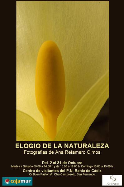 """Elogio de la Naturaleza"" en el Centro de visitantes del Parque Natural de Cádiz<br /> Del 2 al 31 de octubre de 2012"