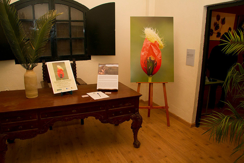 """Del 10 de febrero al 11 de marzo de 2012 tuvo lugar en  el zoobotánico de Jerez de la Frontera la exposición """"Elogio de la naturaleza"""" con 23 fotografías."""