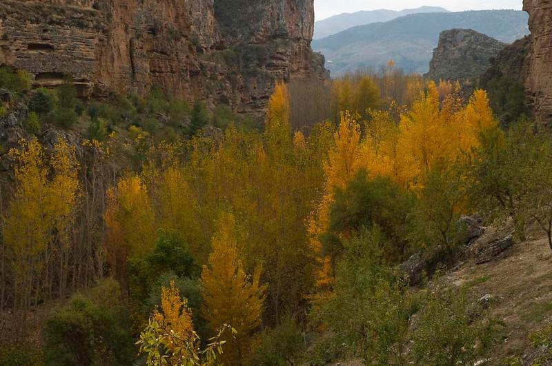 Tajos de Alhama de Granada en otoño