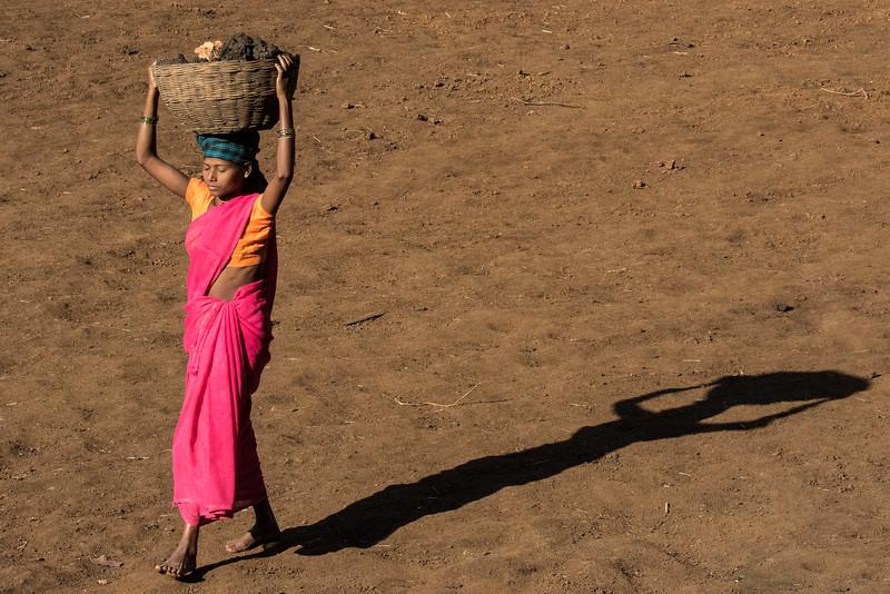 Benda, Bhoramdeo, Chhattisgarh, India. A Baiga village woman carries dirt for an earthen dam.