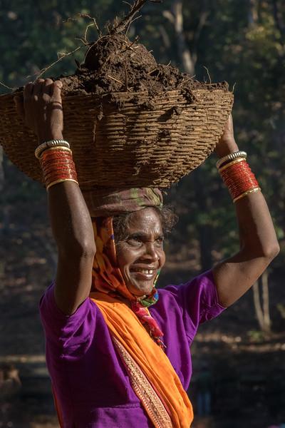 Benda, Bhoramdeo, Chhattisgarh, India. A Baiga village woman carries dirt for the community earthen dam.