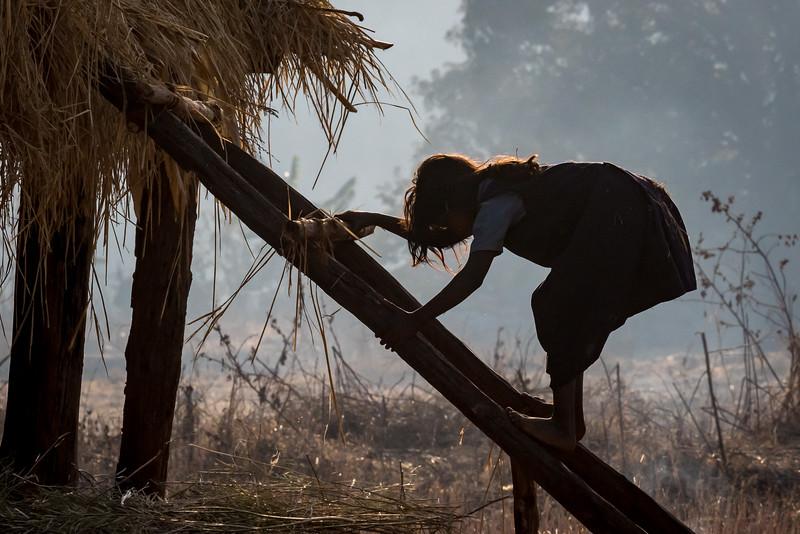 Benda, Bhoramdeo, Chhattisgarh, India. A Baiga village girl plays on the ladder to an elevated haystack.
