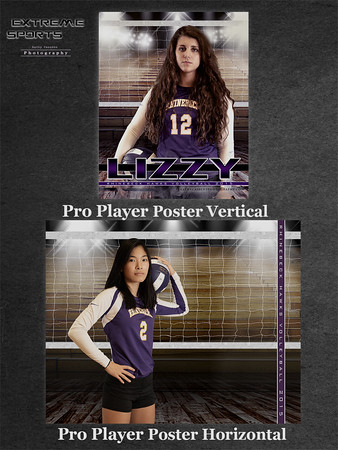volleyball pro sample