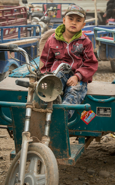 Livestock Market, Kashgar, China