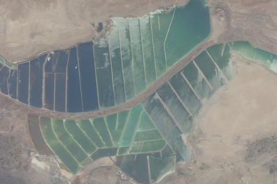 Caption by Space Station Academy student: This looks like part of a river that has dams in the Jordan desert.The first thing I thought of when I looked at this picture was of a green leaf because of the stream attached to the end of the dams and the dams look like the veins in a leaf. The dams must help the people in the desert grow food and have a good water supply.