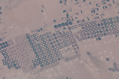 Caption by Space Station Academy student: Showed in the picture, is a pivot cultivation located in Qassim, Saudi Aarabia. The pivot cultivation, is a method of irrigation (used mostly because it's really cheap), where a motor moves in  circles in order to water the crops, that's why it looks like this from above. Though Qassim grows grapes, dates, lemons and others, this particular image shows the cereal crops. Qassim is one of the most important regions in Saudi Arabia, to cultivate and export cereals; is actually so important, that every season, thousands of people of different countries and regions, travel to Qassim to fulfill their markets with grapes, oranges, pomegranates and vegetables. The city of Buraydah, located inside Qassim, is a dates producer worldwide. Something awesome about this dates cultivations, is that they celebrate each September a dates season ceremony, where people from all over the GCC countries, gather together to celebrate and buy their yearly requirement of dates. They also buy camels, in one of the biggest camel markets in the world.