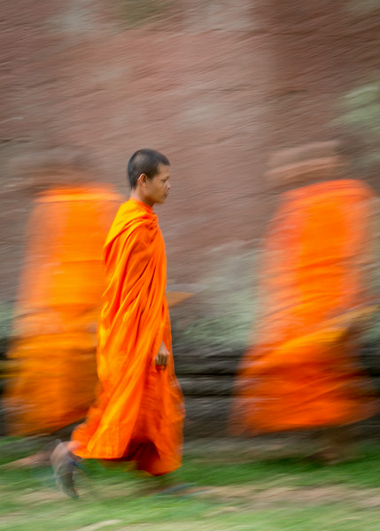 Ta Prohm, Cambodia: with Buddhist monks