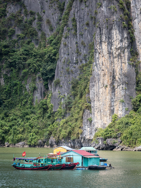 Ha Long Bay, Vietnam: the bay is populated by hundreds of limestone monolithic islands, each with dense vegetation.