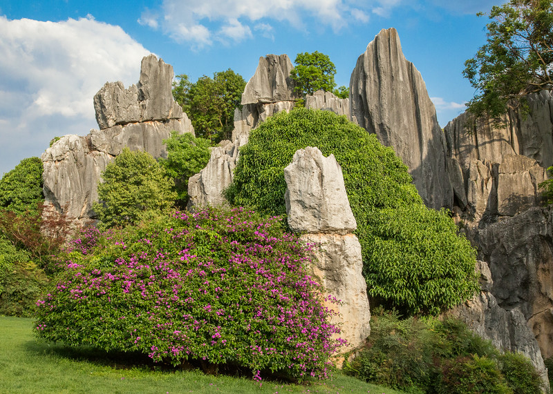 Stone Forest, Shi Lin, China: towering and densely packed limestone pillars, in a parklike setting