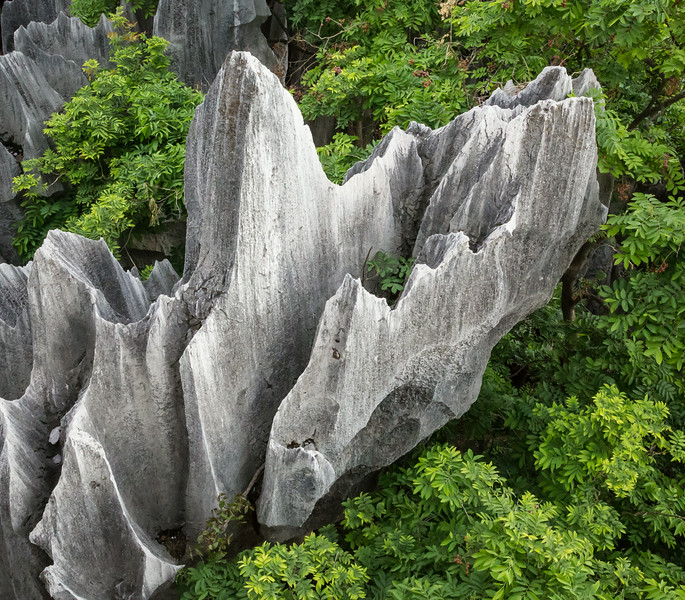 Stone Forest, Shi Lin, China