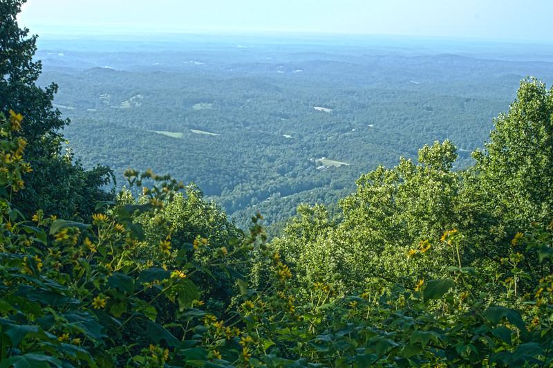 Woody Gap, Appalachian Trail