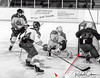 21 Lake Erie Eagle scores - find the puck arrow to puck