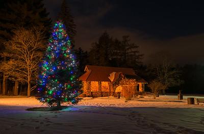 Christmas tree at Greeley Park
