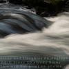 Sweet Creek, Florence, Oregon