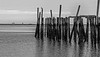 Old Pier off Provincetown Beach