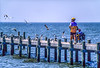 Touring cyclist on dock at Fairhope, Alabama, on Mobile Bay - 1-Edit - 72 ppi