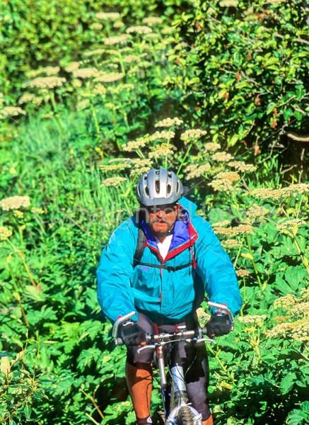 Mountain biker(s) in Chugach Mountains on Alaska's Kenai peninsula  - B ak chugach 106 - 72 dpi 2