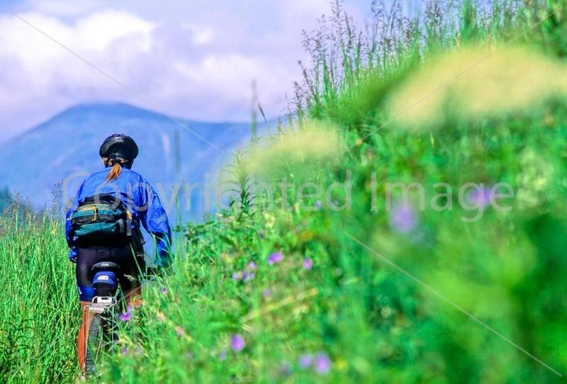 Mountain biker(s) in Chugach Mountains on Alaska's Kenai peninsula  - B ak chugach 86 - 72 dpi 2