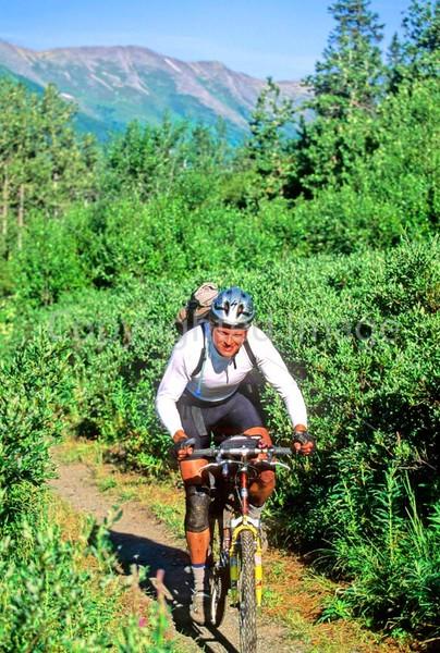 Mountain biker(s) in Chugach Mountains on Alaska's Kenai peninsula  - B ak chugach 71 - 72 dpi 2