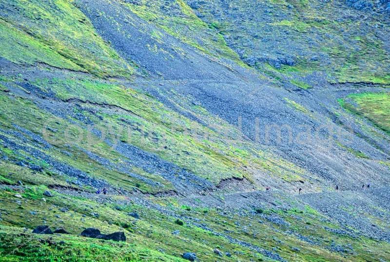 Mountain biker(s) in Chugach Mountains on Alaska's Kenai peninsula  - B ak chugach 5 - 72 dpi 2