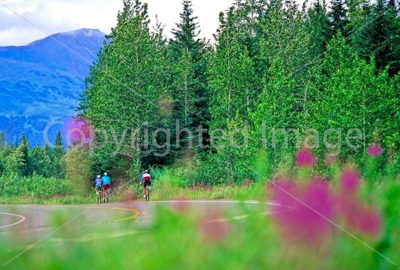 Cyclist on Alaska's Kenai Peninsula - B ak kenai 6 - 72 dpi 2