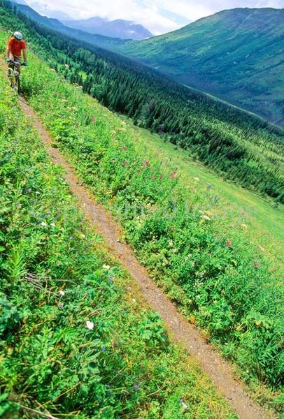 Mountain biker(s) in Chugach Mountains on Alaska's Kenai peninsula  - B ak chugach 34 - 72 dpi 2