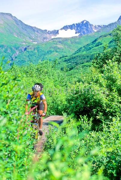 Mountain biker(s) in Chugach Mountains on Alaska's Kenai peninsula  - B ak chugach 81- 72 dpi 2