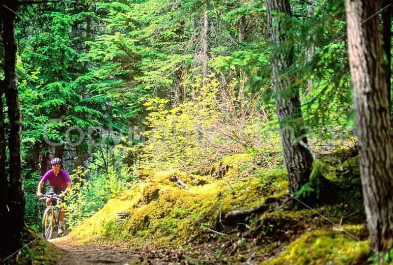 Mountain biker(s) in Chugach Mountains on Alaska's Kenai peninsula  - B ak chugach 3 - 72 dpi 2
