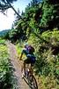 Mountain biker(s) in Chugach Mountains on Alaska's Kenai peninsula  - B ak chugach 80 - 72 dpi 2