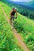 Mountain biker(s) in Chugach Mountains on Alaska's Kenai peninsula  - B ak chugach 46 - 72 dpi 2