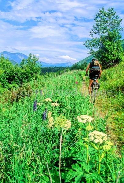 Mountain biker(s) in Chugach Mountains on Alaska's Kenai peninsula  - B ak chugach 55 - 72 dpi 2