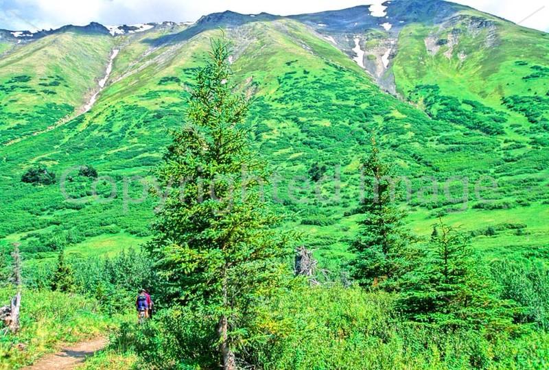 Mountain biker(s) in Chugach Mountains on Alaska's Kenai peninsula  - B ak chugach 96 - 72 dpi 2