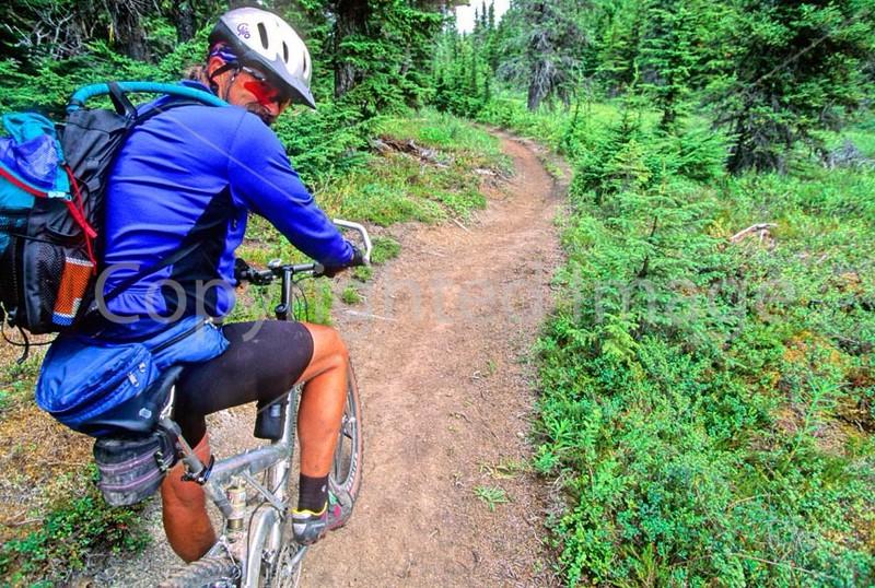 Mountain biker(s) in Chugach Mountains on Alaska's Kenai peninsula  - B ak chugach 6 - 72 dpi 2