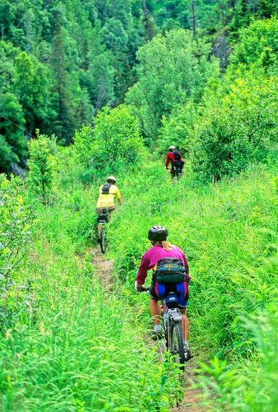 Mountain biker(s) in Chugach Mountains on Alaska's Kenai peninsula  - B ak chugach 73 - 72 dpi 2