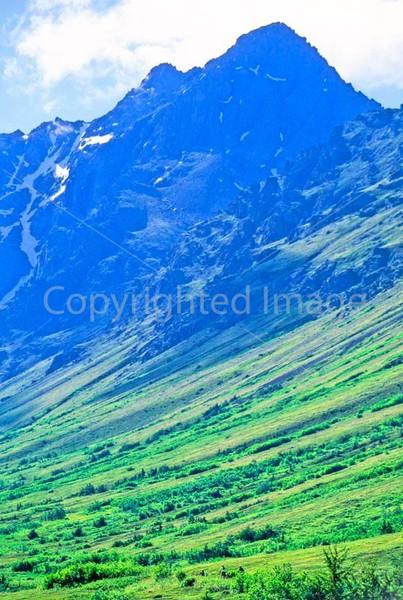 Mountain biker(s) in Chugach Mountains on Alaska's Kenai peninsula  - B ak chugach 95 - 72 dpi 2
