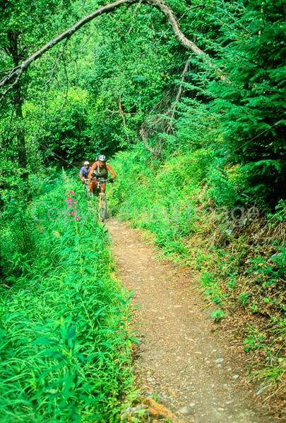 Mountain biker(s) in Chugach Mountains on Alaska's Kenai peninsula  - B ak chugach 65 - 72 dpi 2