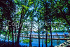 Mount Vernon Trail along Potomac River in & near Alexandria, VA - 72 dpi -1