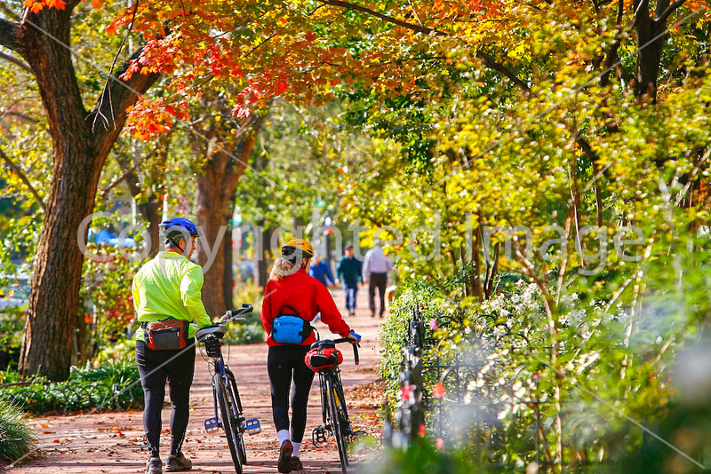 Cyclists in Washington, DC, near the Capitol - 72 dpi -1315
