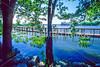 Mount Vernon Trail along Potomac River in & near Alexandria, VA - 72 dpi -23