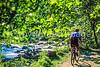 Great Falls Park, VA, near DC; Difficult Run Trail - 72 dpi -5
