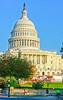 Cyclists near Capitol Hill in Washington, DC - 72 dpi -1468
