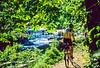 Great Falls Park, VA, near DC; Difficult Run Trail - 72 dpi -3