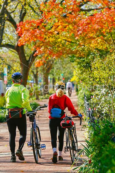 Cyclists in Washington, DC, near the Capitol - 72 dpi -1309