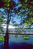 Mount Vernon Trail along Potomac River in & near Alexandria, VA - 72 dpi -15