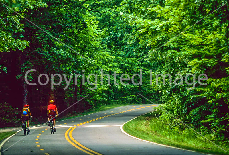 Prince William Forest Park, VA, near DC - 72 dpi -6