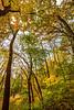 Katy Trail near Rocheport, MO - C2-0185 - 72 ppi